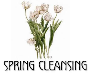 tofino wellness - spring cleansing