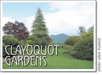 clayoquot island open house