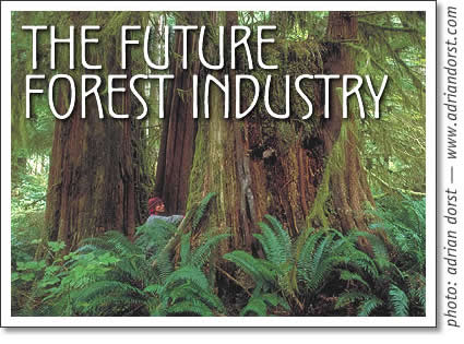 the future forest industry