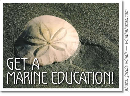 get a marine education with the bamfield marine sciences center