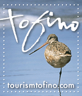 tourism tofino birdwatching