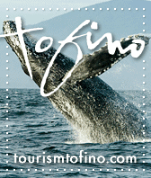 tourism tofino whale watching